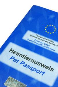 EU Heimtierausweis Berner Sennenhund