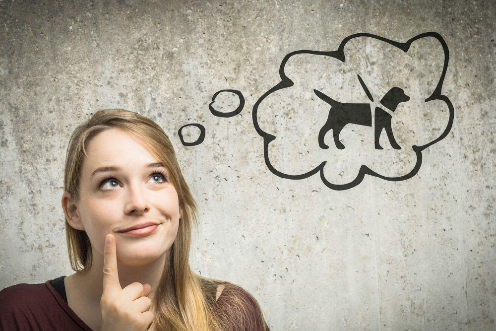 Junge Frau denkt daran sich einen Hund in Not zu kaufen