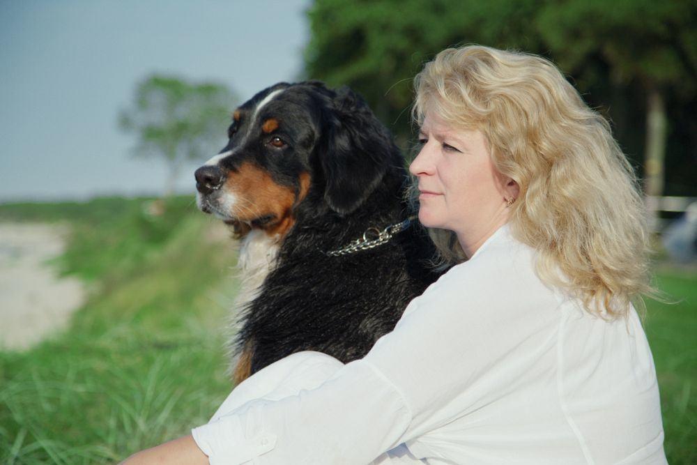 Reisen mit Berner Sennenhund