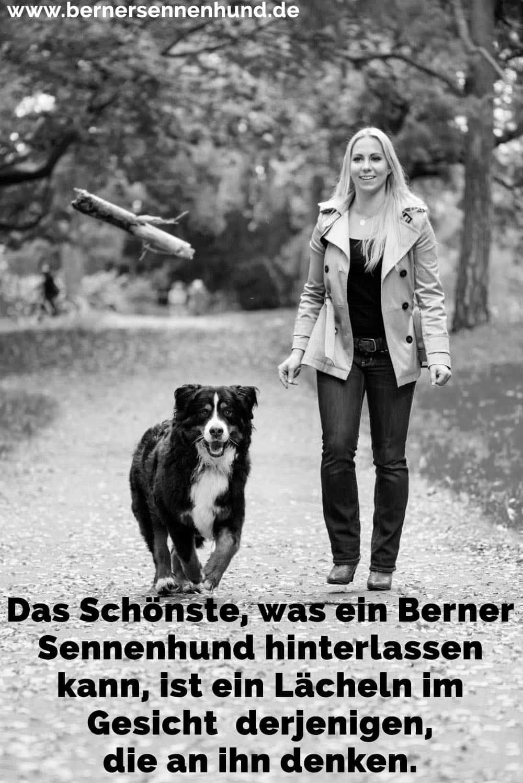 Eine Frau und ihre Berner Sennenhund Spaziergang im Park