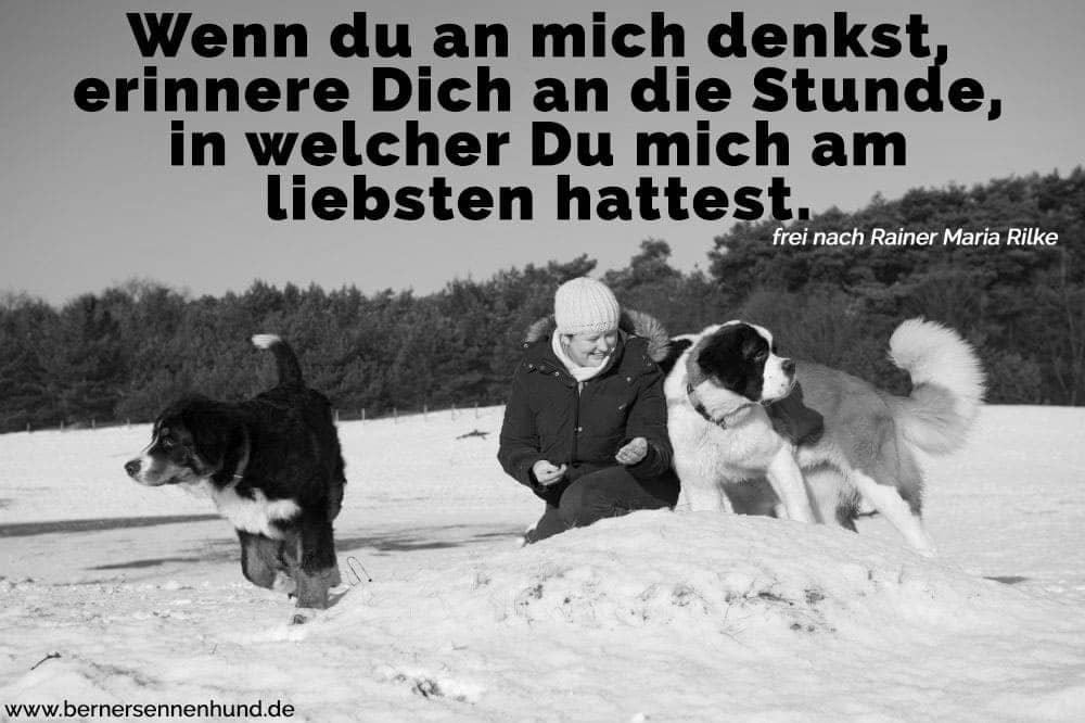 Eine Frau und ihre Berner Sennenhund im Schnee