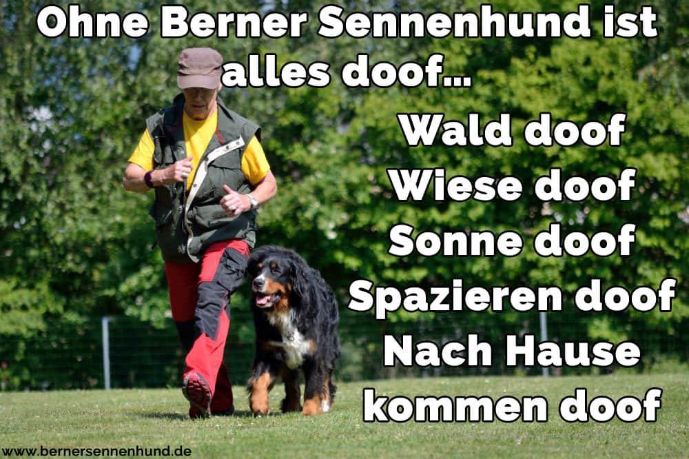 Ein Mann und seine Berner Sennenhund laufen