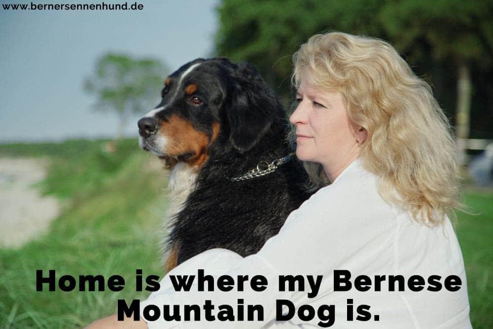 Eine Frau und ihre Berner Sennenhund im Park
