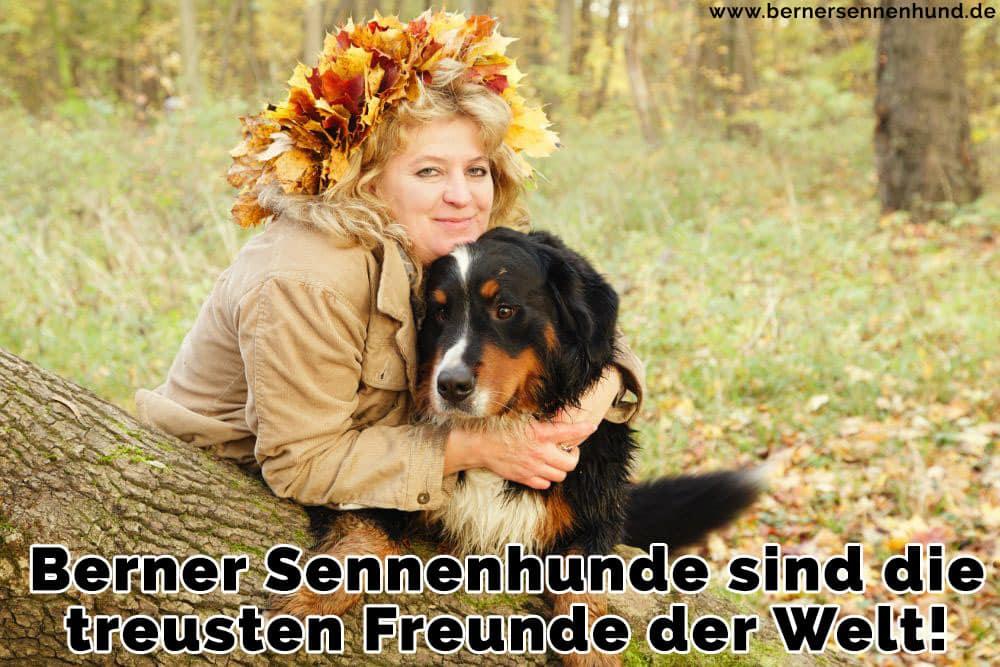 Eine Frau umarmt ihre Berner Sennenhund im Wald