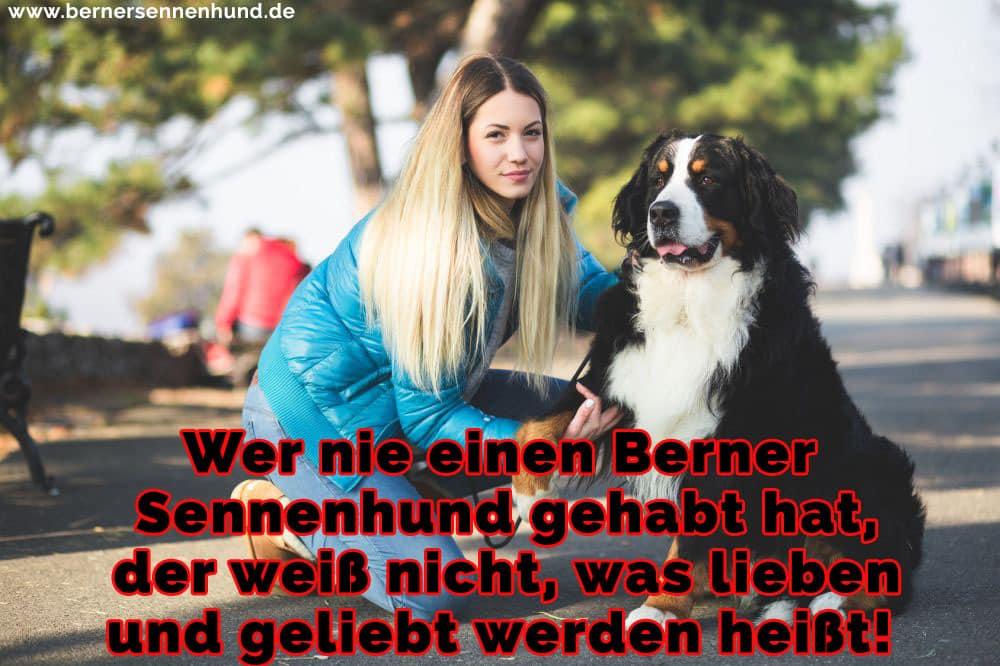 Eine Frau hält die Pfote Ihres Berner Sennenhund