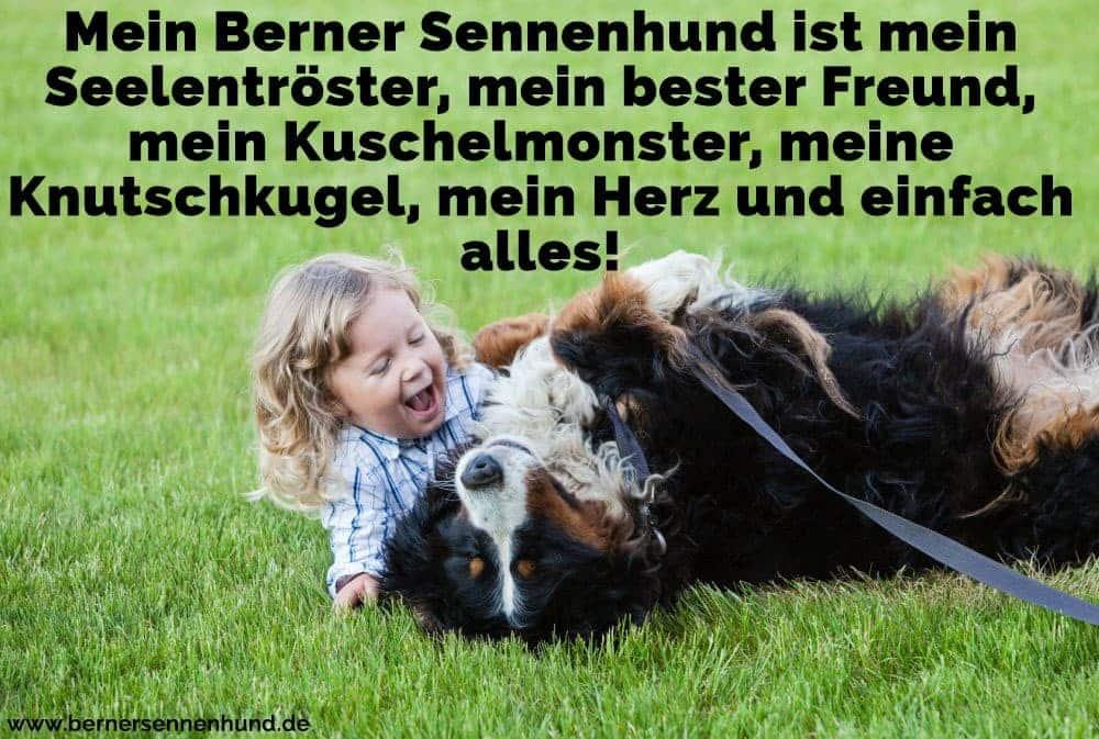 Ein Mädchen und ihre Berner Sennenhund spielen auf Gras