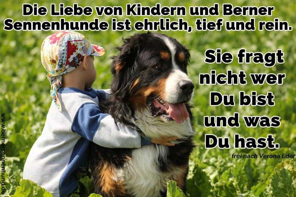 Ein Baby umarmt seine Berner Sennenhund