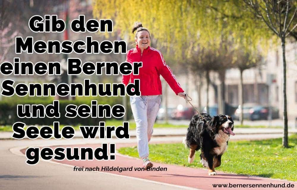 Eine Frau und ihre Berner Sennenhund Jugging im Park