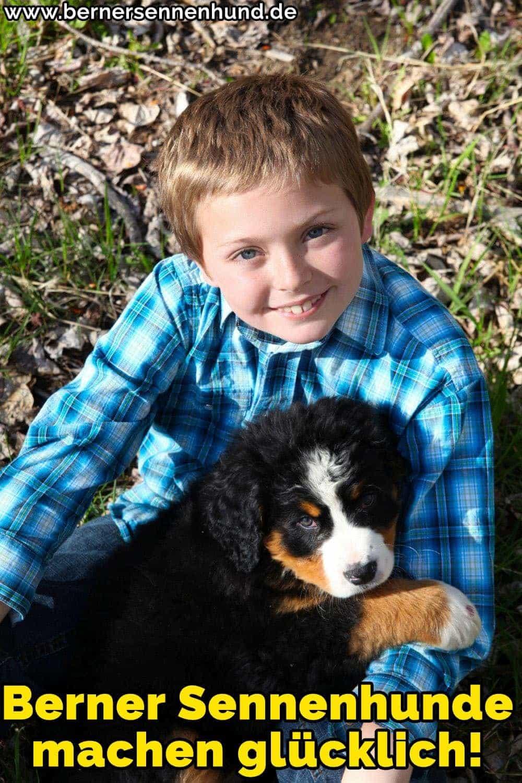 Ein Berner Sennenhund liegend auf dem Schoß eines Jungen