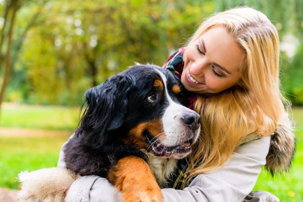 Frau umarmt ihren Berner Sennenhund