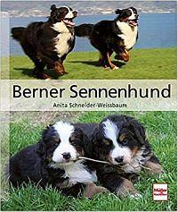 Buch Berner Sennenhund (Anita Schneider-Weissbaum) Buchempfehlung