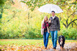 Woman and man having walk with dog in autumn rain